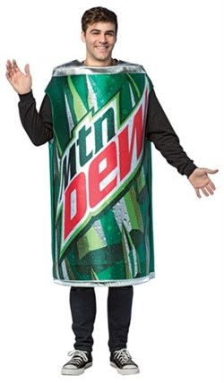 Mountain | Costume | Adult | Can