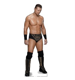 The MIZ Cardboard Cutout